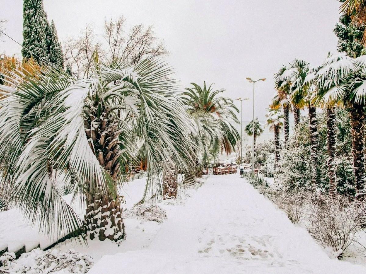 Что посмотреть зимой в Краснодарском крае?
