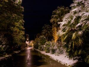 Каков спрос на новогодний отдых в Абхазии?